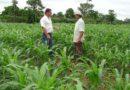 Produtores rurais e trabalhadores do campo também devem se proteger