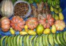 Estado inicia compras de produtores da agricultura familiar contempladas pelo PAA