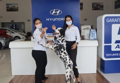 Momento Especial Pet na Cometa Hyundai com o Dálmata, Dog