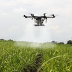 CURIOSIDADES: Especialista diz que salário de piloto de drone chega a R$ 12 mil